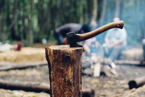 Betriebshaftpflichtversicherung Holzfäller